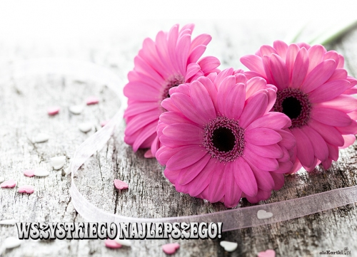 Kwiaty Na Urodziny Kartki Urodzinowe Dniwolnepl